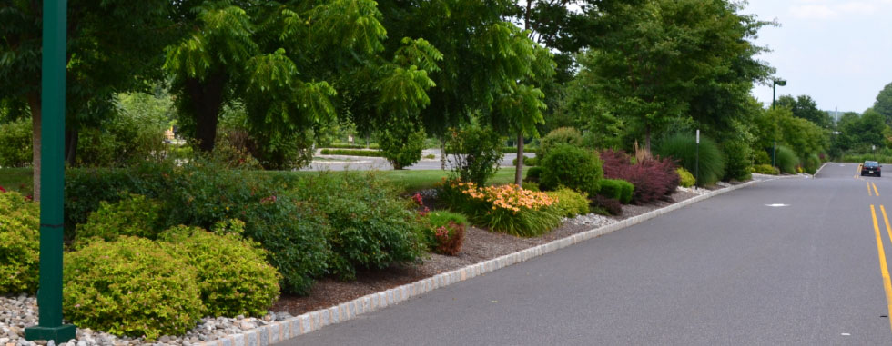 Elite, your full service landscape contractor. - Elite Landscaping